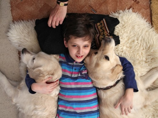 В омском центре канис-терапии собаки научили детей говорить