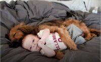 Датские исследователи: собаки уменьшают риск развития у детей аллергии