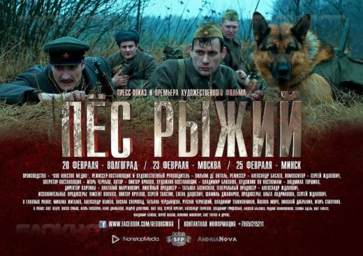 Волгоградцы раньше всех увидят фильм о собаках-минерах «Пес рыжий»