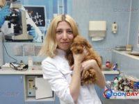 В Ростове спасли едва не лишившегося зрения щенка