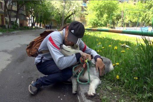 Тюменские полицейские вернули инвалиду его собаку-поводыря