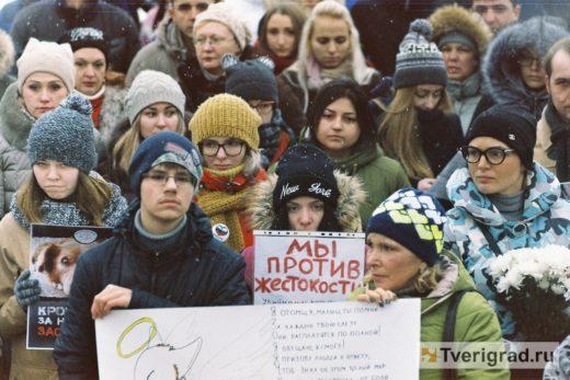 В Твери пройдет митинг в поддержку закона о защите животных