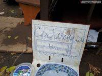 Жители Астрахани своими силами помогают бездомным собакам