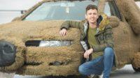 Житель Британии сделал из машины девушки плюшевую собаку