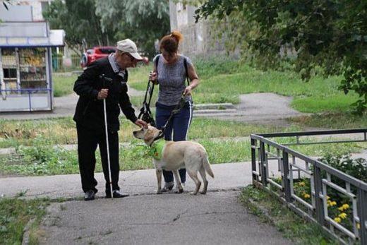 Кузбасский Дед Мороз дождался собаку-поводыря