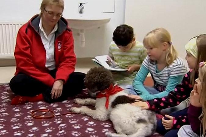 В Финляндии в библиотеке собака обучает детей чтению книг
