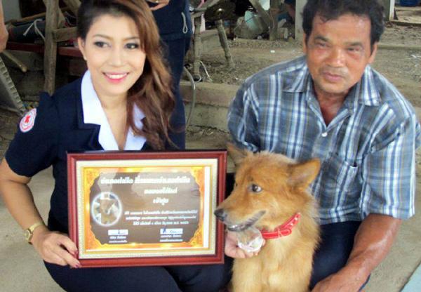 Пес спас жизнь младенцу, выброшенному на свалку