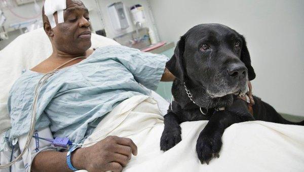 Бизнесмен в США пожертвовал слепому деньги на содержание пса-поводыря